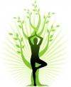 Основы здорового питания. Способы нормализации веса с помощью макробиотического питания