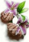 10 января 2013г. Курсы моделирования ногтей от Лимы Самойловой. Набор до 20.12.12
